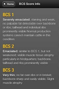 Beef Cow BCS - screenshot thumbnail
