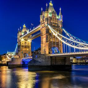 Tower Bridge by Tomas Vocelka - City,  Street & Park  Night ( amazing, thames, london, blue, blue hour, tower bridge, reflections, tourism, view, golden,  )