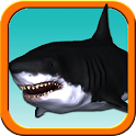 Shark Trainer - Great White