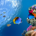 Ocean Aquarium 3D Free LWP icon