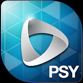 PSY M/V Widget