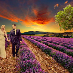 Lavender Field Romance by Alan Evans - Wedding Bride & Groom ( clouds, wedding photography, walking, aj photography, marriage, lavender, tree, wedding, wedding day, sunset, weather, couple, bride and groom )