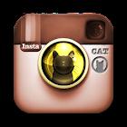 InstaCat PRO icon