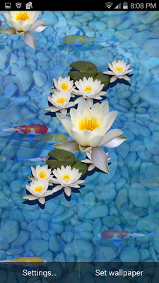 3D Fish Pond Live Wallpaper - screenshot