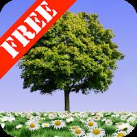 Summer Trees Free 1.20