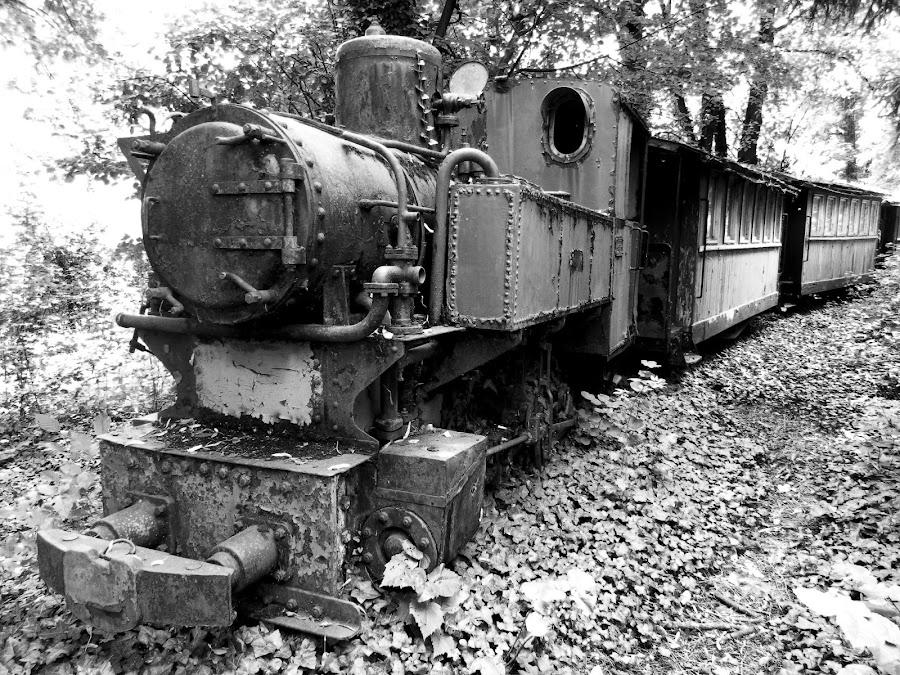 Little old train.. Ćiro. by Željko Salai - Black & White Objects & Still Life