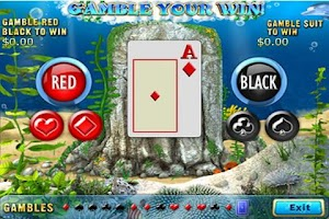 Screenshot of Dolphins Dice Slots