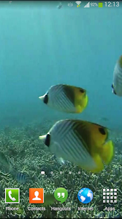 Tropical Fish Underwater Live- screenshot thumbnail