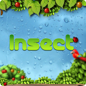 Insect GO LauncherEX Theme
