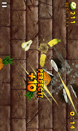 Fruit Slice 1.4.5 screenshot 207561
