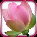 Gayatri Mantra -Mystical India icon