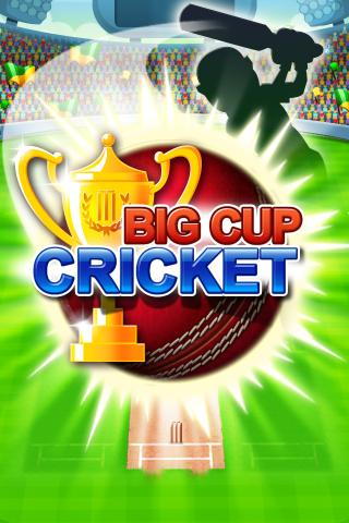 Big Cup Cricket Free - screenshot
