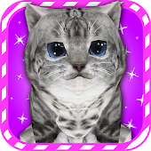 Virtual Pet Kitty Cat