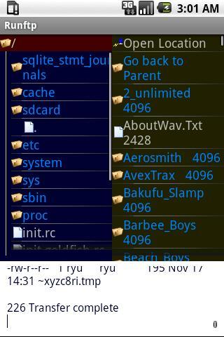 Runftp - screenshot