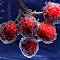 last cherries.jpg