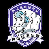 한국체대 천마태권도장