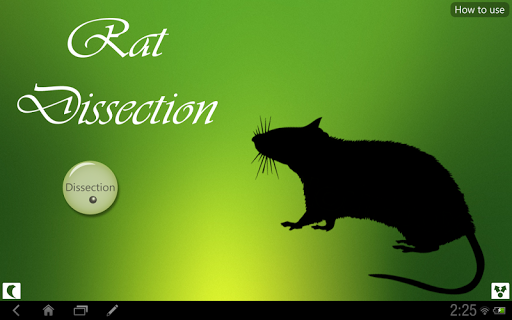 Rat Dissection for tablet