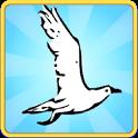 Tiny Flight icon
