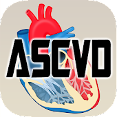 ASCVD Risk Calculator