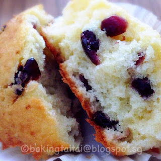 Cranberry Yogurt Muffins