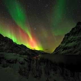 Aurora geo magnetic storm by Marius Birkeland - Landscapes Starscapes ( sky, red, green, aurora borealis, aurora,  )