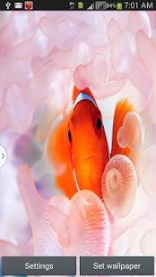 Fantastic Aquarium LW screenshot