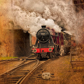 Those were the Days! by Martin Crush - Transportation Trains ( crush photography, locomotives, coal, steam trains, trains, smoke, steam )