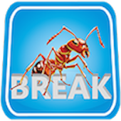 ANT Break Video