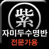 자미두수 명반 (전문가용)