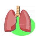 Lung Sounds icon