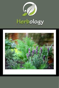 Herbology On The Go - screenshot thumbnail