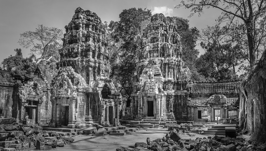 Ta Promh by Cesar Crusat - Buildings & Architecture Public & Historical ( film, tomb raider, black and white, ta prohm, travel, camboya, viajar, ancient building, siem reap, ancient architecture, temple, d7100, ruins, nikon, cambodia )