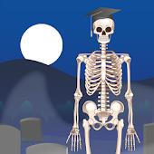 D. Bones - Learn the Skeleton