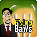 Kris Srikkanth's Flying bails