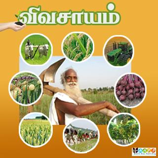 玩免費新聞APP|下載Vivasayam in Tamil - விவசாயம் app不用錢|硬是要APP