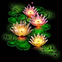 3D Lotus light logo