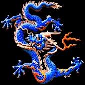 3D dragon 08