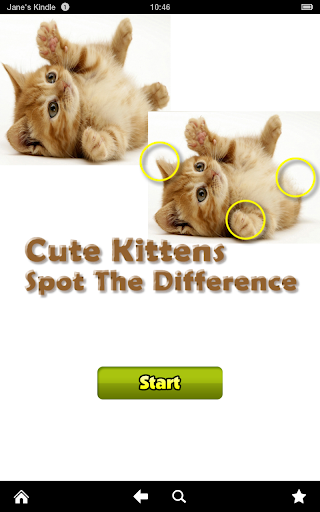 Cute Kittens Difference Game