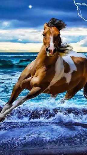 玩個人化App 馬は壁紙を生きる免費 APP試玩