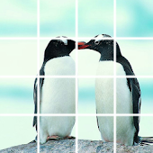 Puzzle Penguin