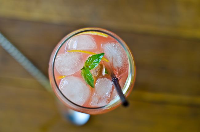 Iced Watermelon and Tonic