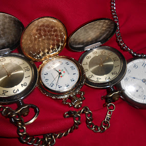Watch Time by Tina French - Artistic Objects Jewelry (  )