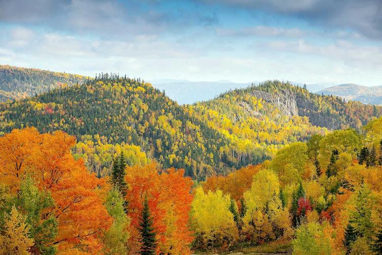 Fall foliage on the Saint Lawrence River.