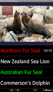 Name That Marine Mammal - screenshot thumbnail