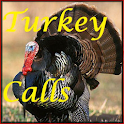 Turkey Calls HD icon