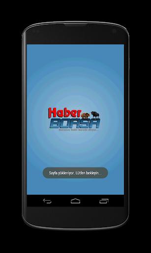 HaberBorsa