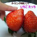 いちごたっち(タイピング研修アプリ) icon