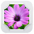 App Gallery & Photo Editor APK for Kindle
