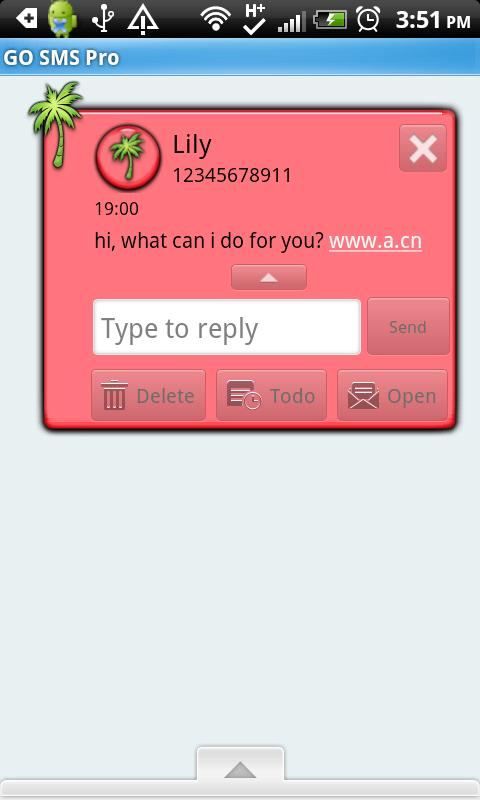 GO SMS THEME/Hawaiian1 - screenshot