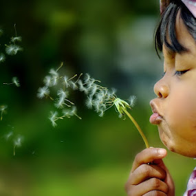 Dandelion adventure by Darlis Herumurti - Babies & Children Children Candids